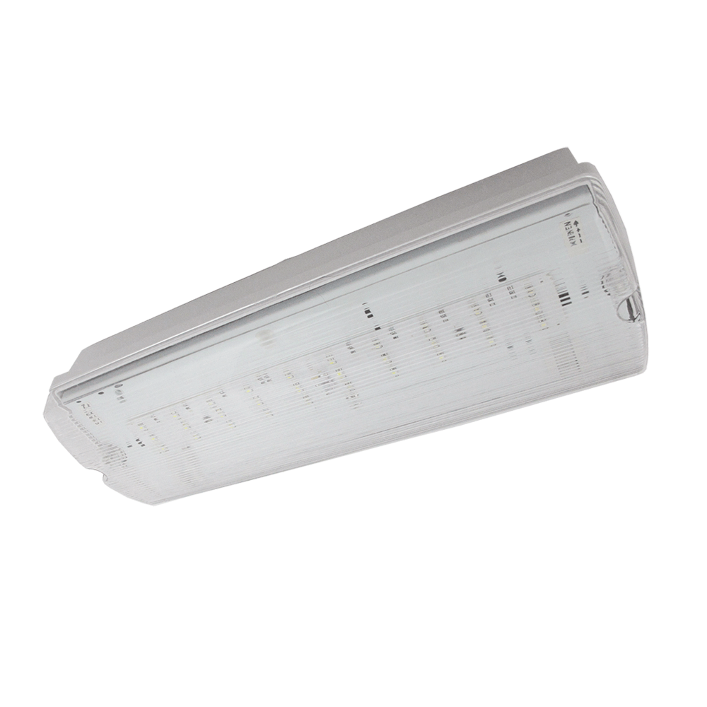 30 LEDs IP65 Emergency Luminaire