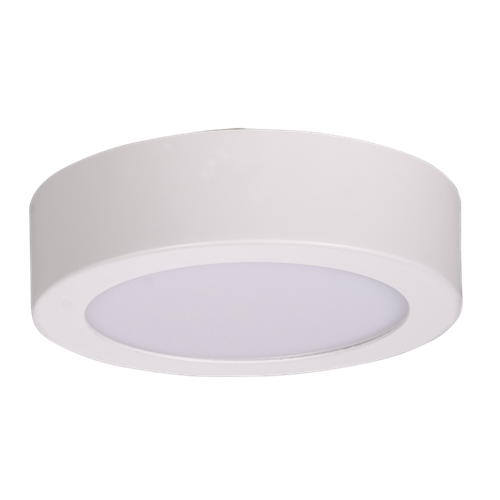 Rina Surface Mounted Downlight